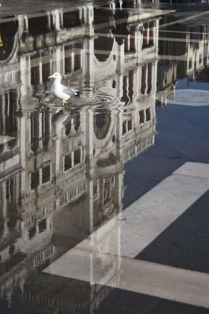 Venice Reflexion - a Photographic Art Artowrk by Phlarized