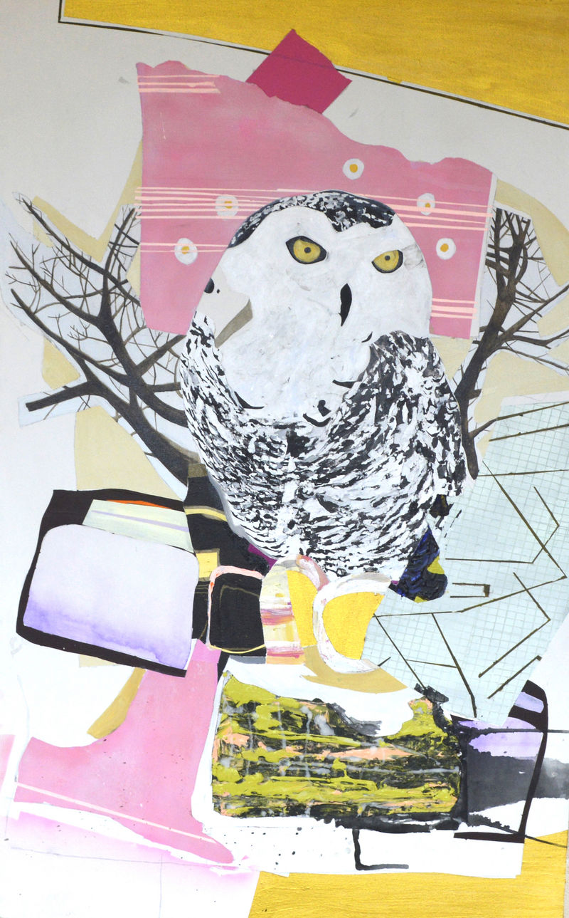 Miscalibration: Signal to noise (it was never about owls) - a Paint by Jenny Day
