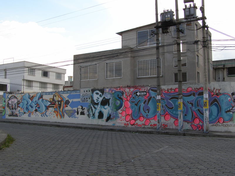 We paint houses with zest/Se pinta casas con pinta - a Urban Art by Omar Puebla