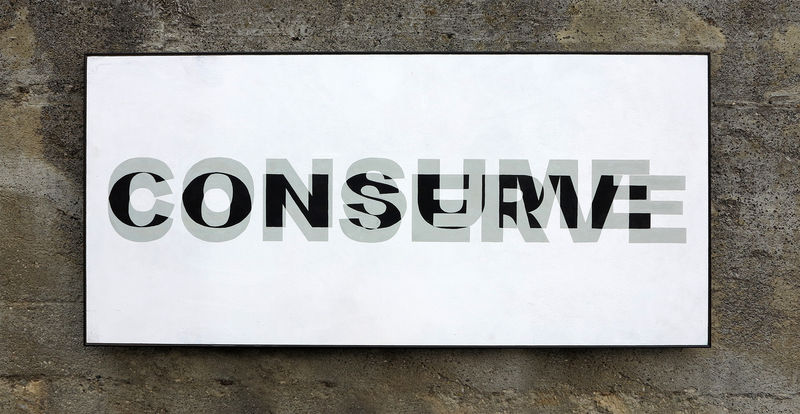 consume-conserve - a Paint by Biz
