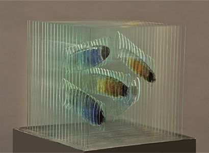 Aquarium - A Sculpture & Installation Artwork by Olesya Feigina
