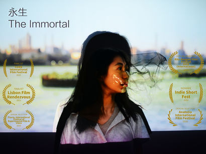 Immortal - a Video Art Artowrk by Borou Yu