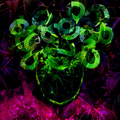 Purple haze Jimi H. - a Photographic Art Artowrk by Thomas Bienert