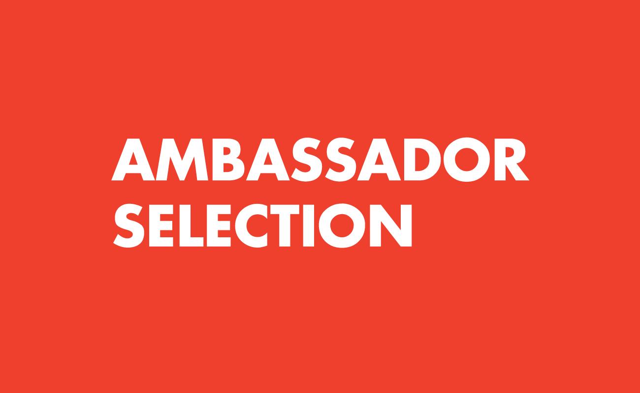 Ambassador Selection | Arte Laguna World